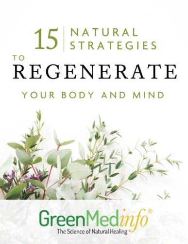 15 Natural Strategies to Regenerate you Body and Mind ebook