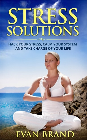 Image Stress Solutions eBook