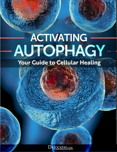 Image Activating Autophagy Gift