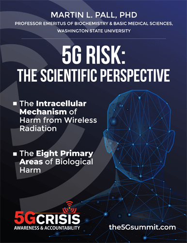 "image ""5G Risk: The Scientific Perspective"" eBook"